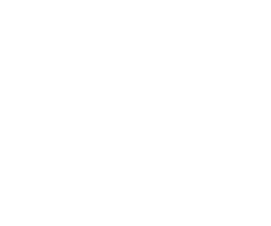 party_icon