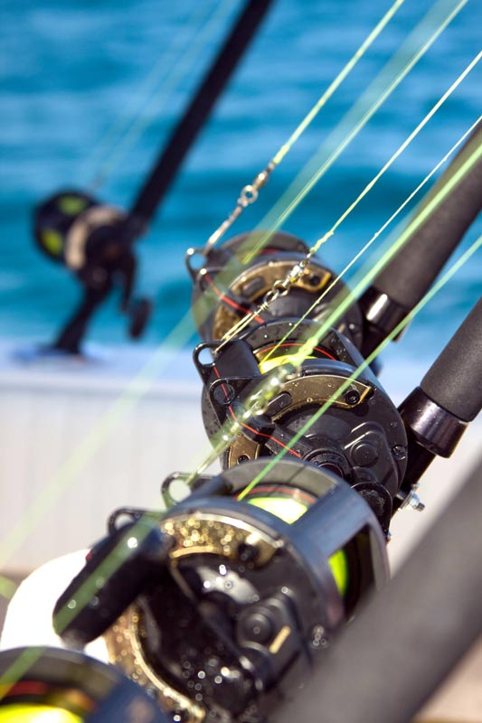 EXCURSIONS AND FISHING TRIPS